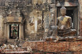 The Monkeys play and live in the ruin temple Royalty Free Stock Photo