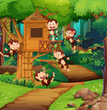 Monkeys playing at the treehouse Royalty Free Stock Photo