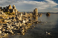 Mono Lake Royalty Free Stock Photo