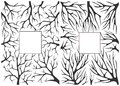 Monochrome black and white background with tree branches Royalty Free Stock Photo