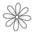 Monochrome contour of daisy flower icon floral design Royalty Free Stock Photo
