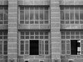 Monochrome grid line building