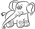 Monochrome hand drawn illustration of young elephant.s.