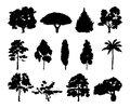 Monochrome illustrations of different trees silhouettes
