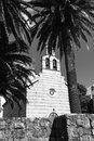 Monochrome photo of old stone church surrounded by palms black and white Stock Images