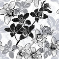 Monochrome seamless background with hand drawn orchids. Royalty Free Stock Image