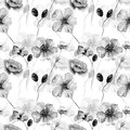 Monochrome seamless wallpaper with wild flowers Royalty Free Stock Photo