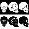 Monochrome skull Stock Images