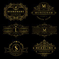 Monogram design elements, graceful template. Calligraphic elegant line art logo design. Gold Letter emblem sign B, M, L, S