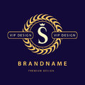 Monogram design elements, graceful template. Elegant line art logo design. Letter S. Retro Vintage Insignia or Logotype. Business