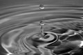 Monotone Water Drop Royalty Free Stock Image