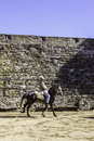 Monsaraz april horse training in alentejo town of monsaraz castle inner space used as a traditional bullfighting arena on Stock Image
