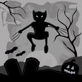 Monster in halloween a wolverine cat coming out from the shadows to celebrate Royalty Free Stock Images
