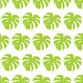 Monstera silhouettes seamless pattern. Tropical leaves. Royalty Free Stock Photo