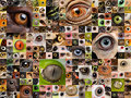 Montage of animal eyes Stock Photography