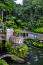 Monte palace tropical garden in funchal jardim tropical monte palace madeira the occupies an area of square meters and houses an Stock Images