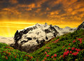 Monte rosa beautiful mountain in the sunset swiss alps Royalty Free Stock Images