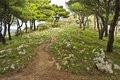 Monte San Constanza Walking Path, Italy Stock Photo