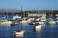 Monterey bay peaceful marina at california Royalty Free Stock Photo