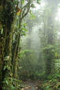 Monteverde Cloud Forest Nature...