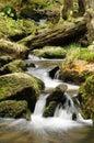 Montez en cascade sur le fleuve Photographie stock