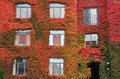 Montreal automn beautiful autumn color in Royalty Free Stock Image