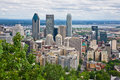 Montreal City Royalty Free Stock Photo