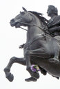 Monument to peter great saint petersburg russia called bronze horseman located senatskaya square horse holding bunch natural Stock Image