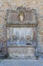 Monumental fountain. Tuscania. Lazio. Italy. Stock Photo