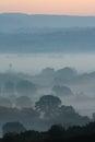 Moody Dawn Landscape