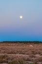 Moon above salt desert Chott el Djerid, Sahara desert, Tunisia, Africa Royalty Free Stock Photo
