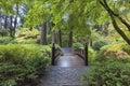 Moon Bridge at Japanese Garden Royalty Free Stock Photo