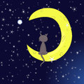 Moon cat Royalty Free Stock Images