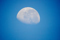 The moon on the day Royalty Free Stock Photo