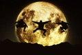 stock image of  Moon freeruners
