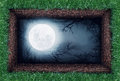 Moon in the ground Royalty Free Stock Photo