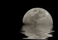 Moon reflections Royalty Free Stock Photo
