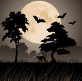 Moon and silhouettes of trees Stock Photo
