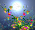 Moonlight Flowers-2 Royalty Free Stock Photography