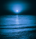 Moonlight Night Background Royalty Free Stock Photo