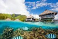 Moorea landscape Royalty Free Stock Photo