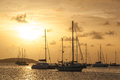 Moored Sailboats in a St. Martin Harbor II Royalty Free Stock Photo