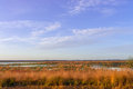 The moorland in the autumn a Stock Photos