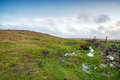 Moorland at winter soggy on bodmin moor in cornwall Stock Image