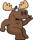 Moose Sitting Royalty Free Stock Images