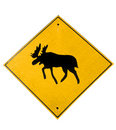 Moose traffic sign Royalty Free Stock Photo