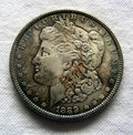 Morgan Silver Dollar Stock Image