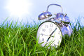 Morning alarm clock on grass Stock Images