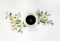 Morning coffee and white wild roses Royalty Free Stock Photo