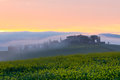 Morning fog view on farmhouse in tuscany italy at valley d orcia Stock Image
